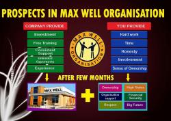 Maxwell Organisation