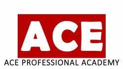 ACE PROFESSIONAL ACADEMY